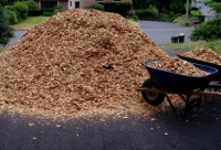 wood_chip_mulch
